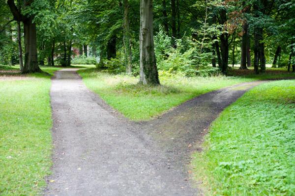 Fazer um percurso diferente faz o seu cérebro sair de sua zona de conforto.