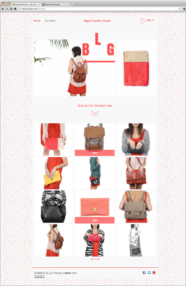 Bag and Leather Goods