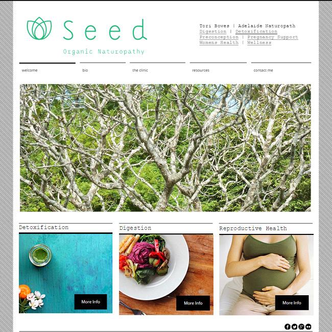 Seed Organic Naturopathy